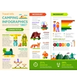 camping infographics - poster brochure cover vector image vector image