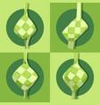ketupat collection for eid al-adha flat vektor vector image vector image