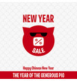 new year sale 2019 happy chinese new year the vector image