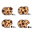 set chocolate chip bitten cookies vector image