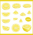 set of fresh yellow lemon in various slice styles vector image