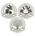 set of stickers or labels for olive oil vector image vector image