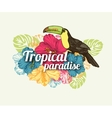 Tropical summer typographical background with hand vector image