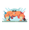 fight of sumo athletes vector image