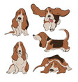 collection basset hound dog icons vector image vector image