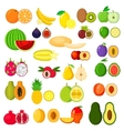 flat whole and halves fruits vector image vector image