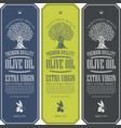 labels for olive oil with an olive tree vector image vector image