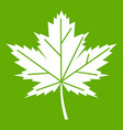 maple leaf icon green vector image vector image