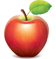 one red apple vector image vector image