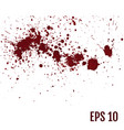 set of various blood or paint splatters set of vector image