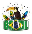 toucan exotic bird with brazilian label vector image