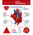 vertical banner with heart infographic statistic vector image