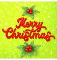 Xmas 3d lettering inscription and holly on green vector image
