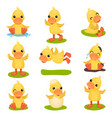cute little yellow duckling character set chick vector image vector image