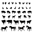 firm animals vector image