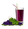 Grape juice glass vector image vector image