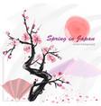 realistic sakura blossom - japanese cherry tree vector image vector image