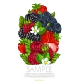 Fresh berries mix isolated vector image vector image