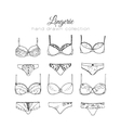 lingerie set Sexy underwear design vector image vector image