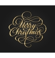merry christmas card with golden glitter lettering vector image
