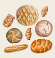tasty bakery top view vector image vector image