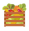 vegetables in a wooden box icon vector image