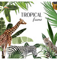 african safari animals frame cute animals vector image