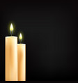 beautiful glowing candles with vector image
