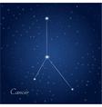 cancer constellation zodiac vector image vector image