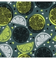 citrus pattern graphics vector image vector image