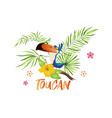 cute toucan cartoon bird with tropical branch vector image