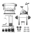 fitness workout equipment training apparatuses vector image vector image