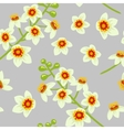 Frankincense flower seamless pattern vector image vector image