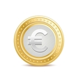 Golden euro coin vector image