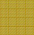 golden net vector image vector image