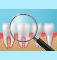 healthy teeth with magnifying glass realistic vector image