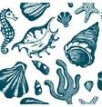 Seamless pattern with blue hand drawn seashells vector image