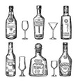 vintage hand drawing different bottles vector image