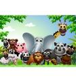 funny animal cartoon in jungle