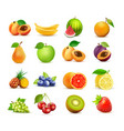 icon set of fruits isolated on white vector image vector image