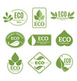 labels or eco logo set with plants and green leafs vector image vector image