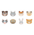 muzzles of animals icons in set collection for vector image