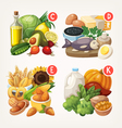 Products rich with vitamins vector image vector image