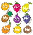 set of organic fruit vector image vector image
