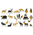 set winter animals silhouettes vector image