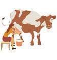 woman milks a cow vector image