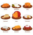 delicious exquisite cheeses on round wooden treys vector image vector image