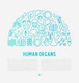 human internal organs concept in half circle vector image vector image
