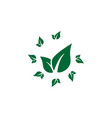 leaf icon design template isolated vector image vector image