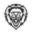 Lion head front vector image vector image
